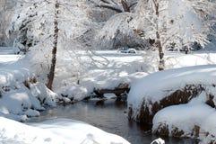 Täckt snö parkerar och strömmar Arkivbild