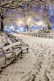 Täckt snö parkerar på natten arkivbilder
