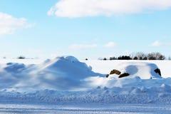 Täckt snö vaggar vid en landsväg Arkivbilder