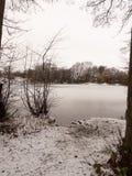 täckte träd fryste sjöplatsen för lakesiden övervintrar den snö december Royaltyfri Bild