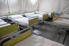 Tält för fältsjukhus med sängar fotografering för bildbyråer