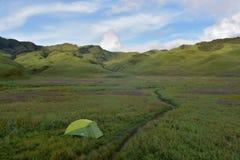 Tält i grön Dzukou dalcampingplats Arkivbilder