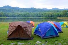 Tält i nationalpark Royaltyfria Bilder