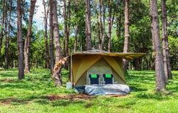 Tält i skog Royaltyfri Bild