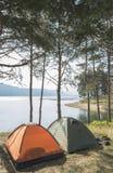 Tält i skogen Arkivbilder