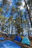 Tält på berget Arkivbilder