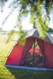 Tält på en campa plats Arkivbilder