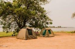 Tältläger i savannahen på sjön av Zimbabwe, Sydafrika royaltyfri fotografi
