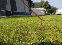 Tältpinne som säkrar repet av ett tält på en campinpground royaltyfri fotografi