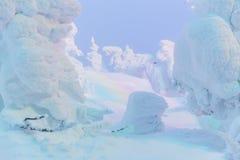 Tänd upp snömonster på det Zao berget Arkivfoton