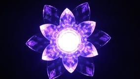 Tända blommor Royaltyfria Bilder
