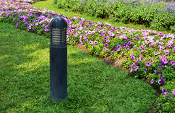 Tända i trädgården och blommorna Royaltyfri Fotografi
