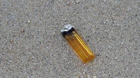 Tändare med levande skal på stranden arkivfilmer