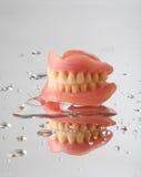 tänder Royaltyfria Bilder