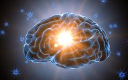 Tänkande prosess Neuronsystem Mänsklig anatomi överförande pulsar och utveckling av information Arkivbilder