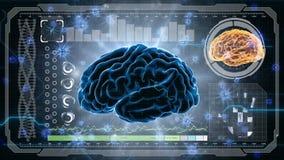 Tänkande prosess Neuronsystem Mänsklig anatomi Hjärnarbete överförande pulsar och utveckling av information HUD bakgrund royaltyfri illustrationer