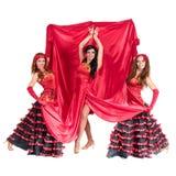 Tänzer mit drei Flamencos, der auf einem lokalisierten Weiß aufwirft Stockfotografie