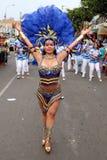 Tänzer in peruanischem carnaval stockfotografie