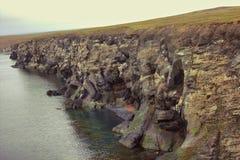 Täppa av den jätte- (15 km, 220 tusen sillgrisslor) kustfågelkolonin på den sydliga ön, Novaya Zemlya Barents hav Arkivbild