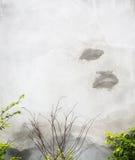 tät betong som skjutas upp väggen royaltyfri foto
