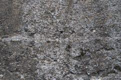 tät betong som skjutas upp väggen Fotografering för Bildbyråer
