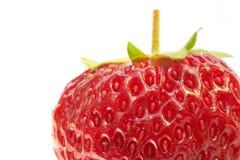 tät extrem jordgubbe upp fotografering för bildbyråer