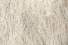 tät fiberfilt upp trä Fotografering för Bildbyråer