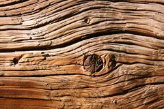 tät gammal textur upp trä Arkivbild