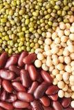 tät grön röd soy för böna upp Arkivbild
