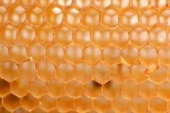 tät honungskakabild för bakgrund upp Fotografering för Bildbyråer