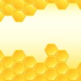 tät honungskakabild för bakgrund upp Arkivbilder