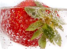 tät jordgubbe upp arkivbild