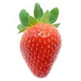 tät jordgubbe upp Fotografering för Bildbyråer