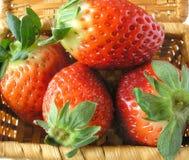 tät jordgubbe upp Royaltyfri Fotografi