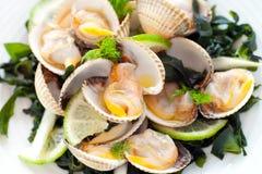 tät makrostartknapp för mussla upp Arkivfoton