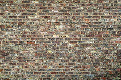 tät modell för tegelsten upp väggen Royaltyfria Foton