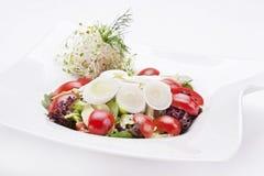 tät sallad som skjutas upp grönsaken Arkivfoton