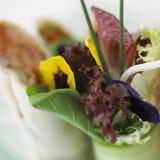 tät sallad som skjutas upp grönsaken Royaltyfria Foton