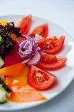tät sallad som skjutas upp grönsaken Fotografering för Bildbyråer