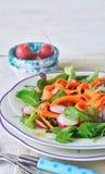 tät sallad som skjutas upp grönsaken Vårgrönsaksallad Royaltyfri Bild