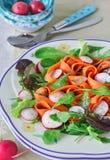 tät sallad som skjutas upp grönsaken Vårgrönsaksallad, närbild Arkivfoton