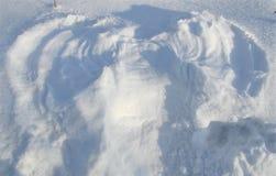 tät snow för ängel upp Royaltyfri Fotografi