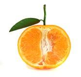 tät tangerine upp Royaltyfri Bild