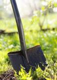 tät trädgårds- skyffel upp Royaltyfria Foton