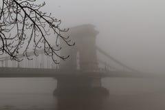 Tät vinterdimma i Budapest Arkivfoton