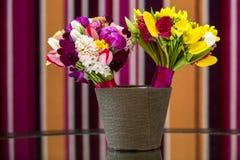 täta blommor upp Royaltyfri Fotografi