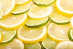 täta citronlimefrukter som skivas upp Royaltyfri Bild
