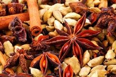 täta indiska kryddor upp Arkivfoton