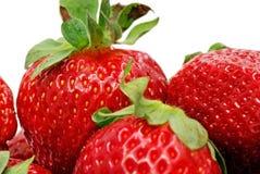 täta jordgubbar upp Royaltyfri Fotografi