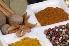 täta kryddor upp royaltyfri foto